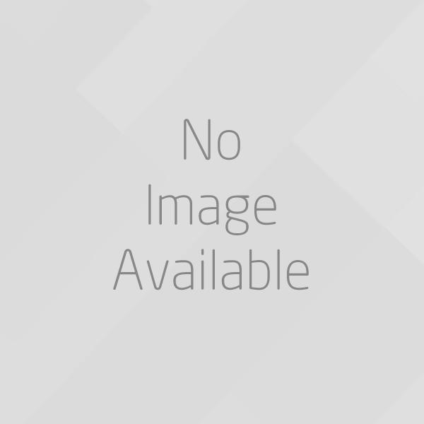Altair Inspire Render